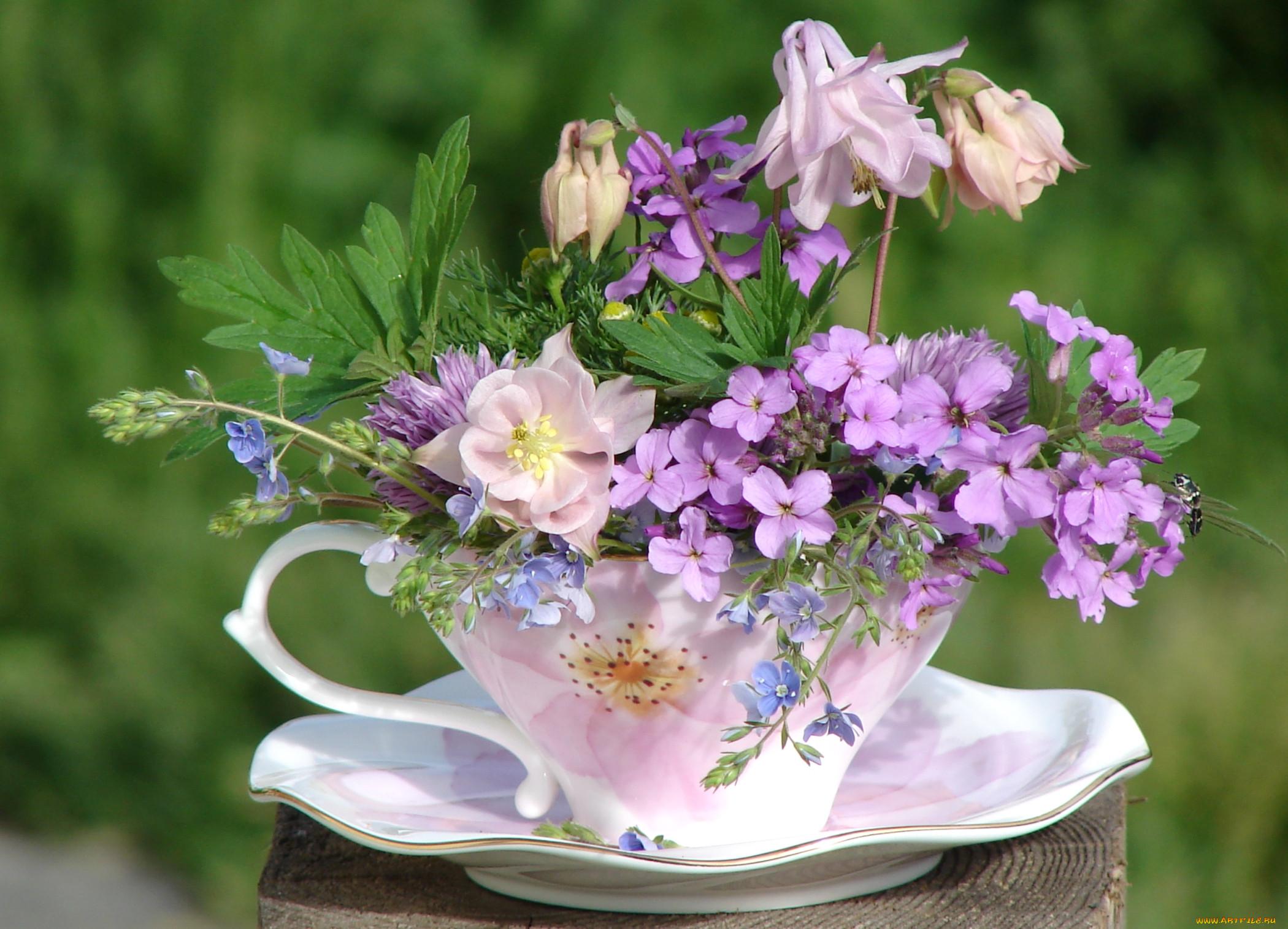 если открытки доброе утро и прекрасного дня с луговыми цветами сердца выкинуть